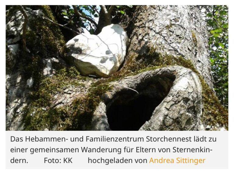 Read more about the article Austausch-Treffen